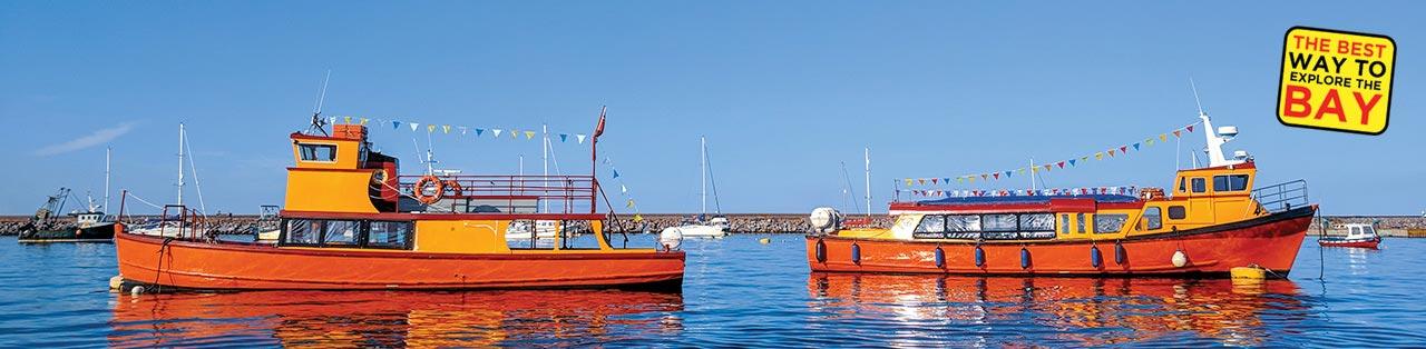 Boat Trips in Torquay
